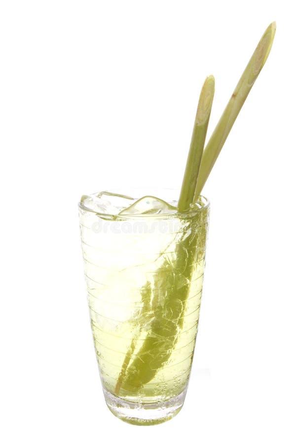 Lemongrassdrink arkivbilder
