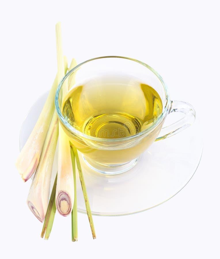 Lemongrastee stockbild