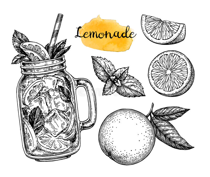Lemoniada i składniki ilustracji