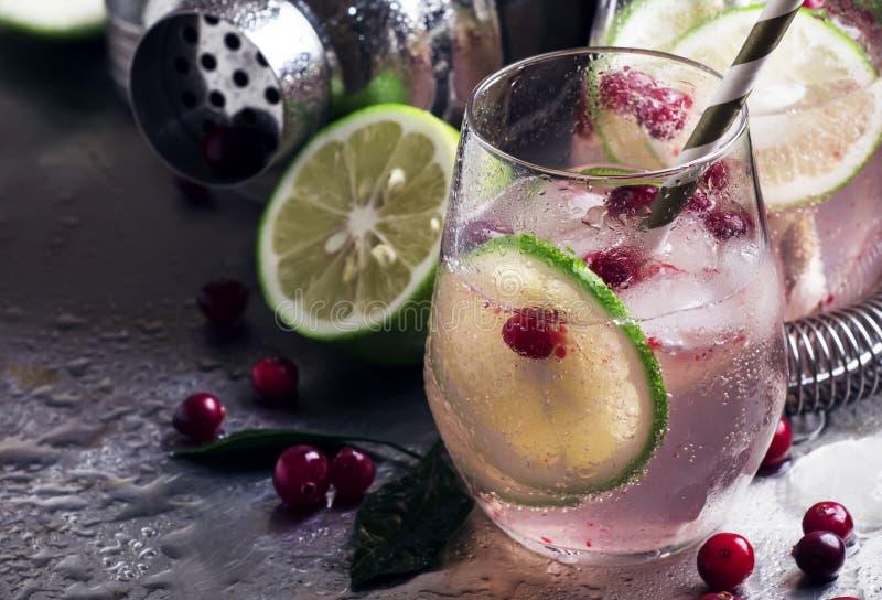 Lemoniada z wapnem, cranberries, cukrowym syropem i lodem, miękki napój, stalowy tło, prętowi narzędzia, selekcyjna ostrość obraz royalty free