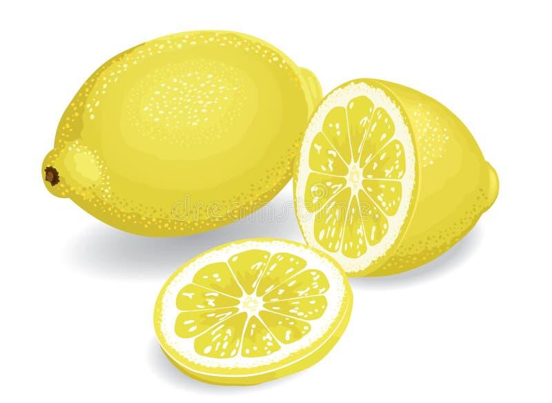 Download Lemons Royalty Free Stock Images - Image: 20984579