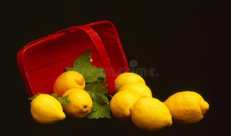 Lemons and Basket royalty free stock photography