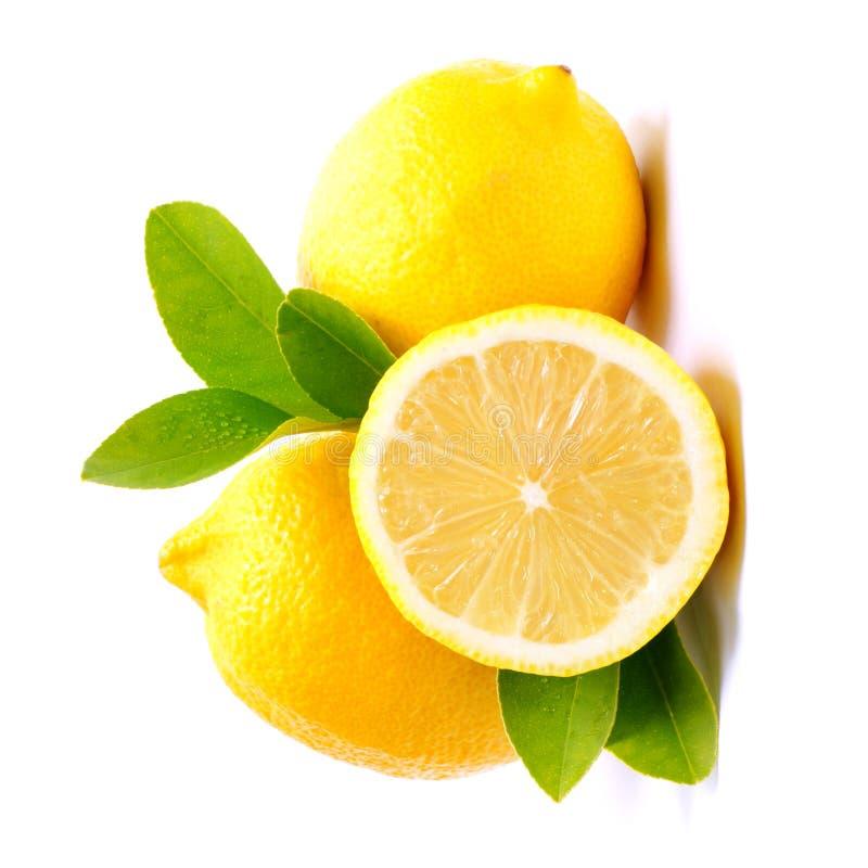 Free Lemons Stock Photography - 23417092