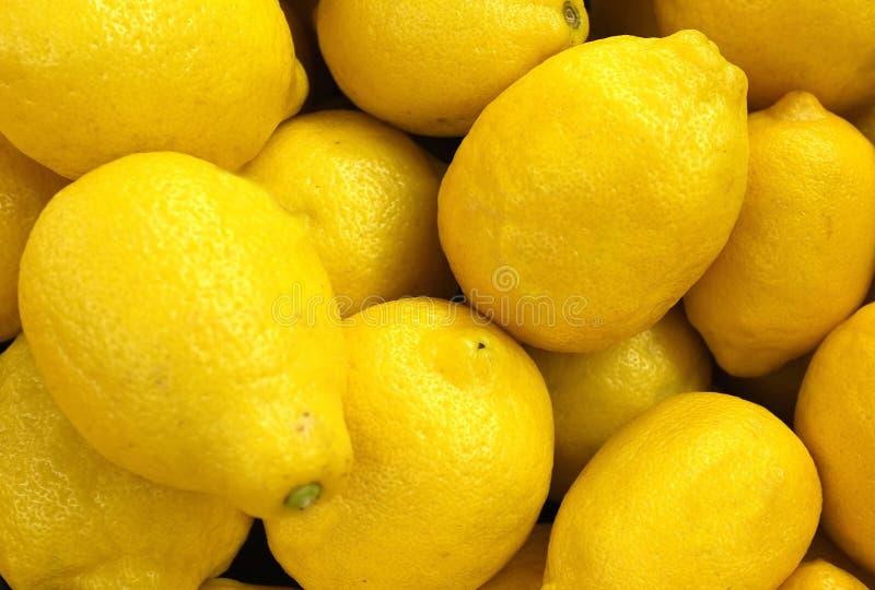 Download Lemons stock image. Image of sour, background, vivid - 25581001