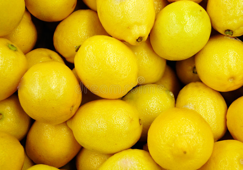 Download Lemons stock image. Image of harvest, lemon, food, produce - 85029