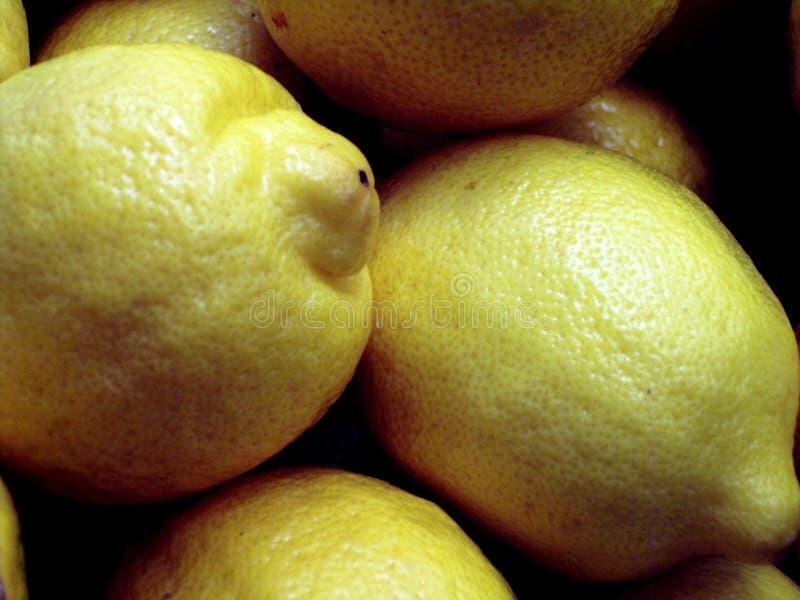 Lemons Royalty Free Stock Images