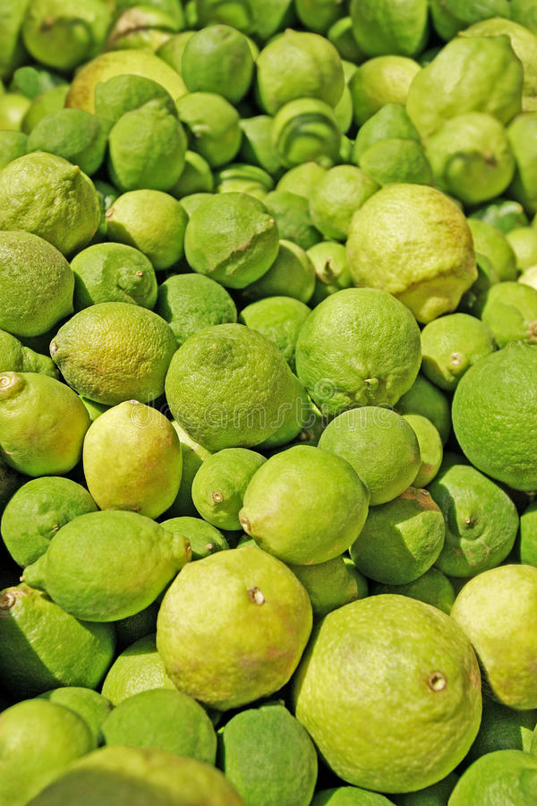 Free Lemons And Limes Royalty Free Stock Image - 15733156