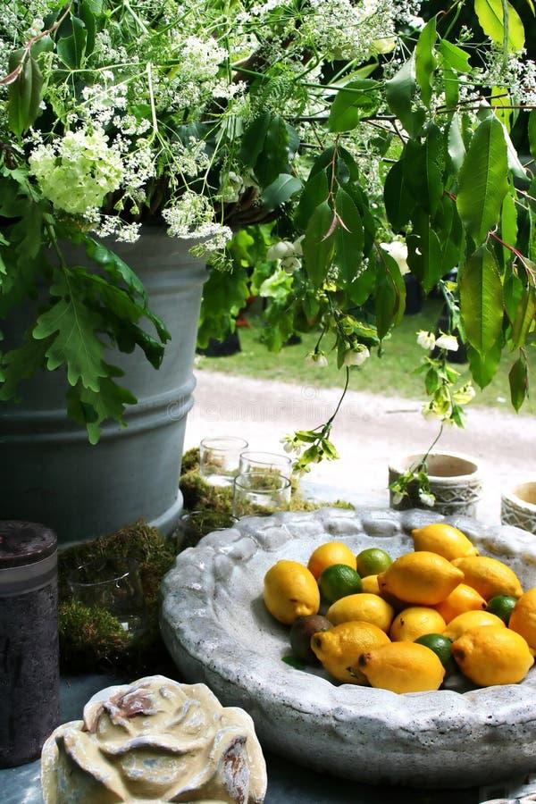 Lemons In Bowl Stock Images