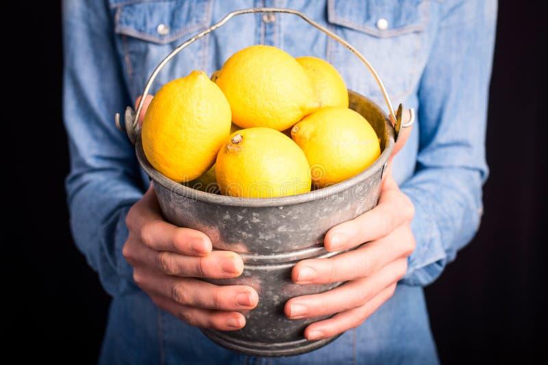 Lemons bucket in hands stock images