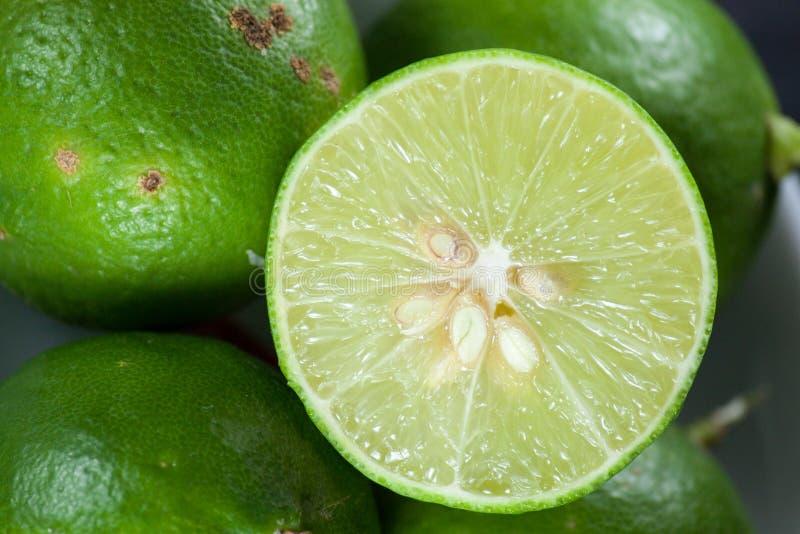 Lemons royalty free stock photos