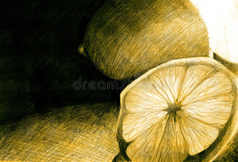 Lemons drawn. Hand-drawn lemons vintage background stock photography