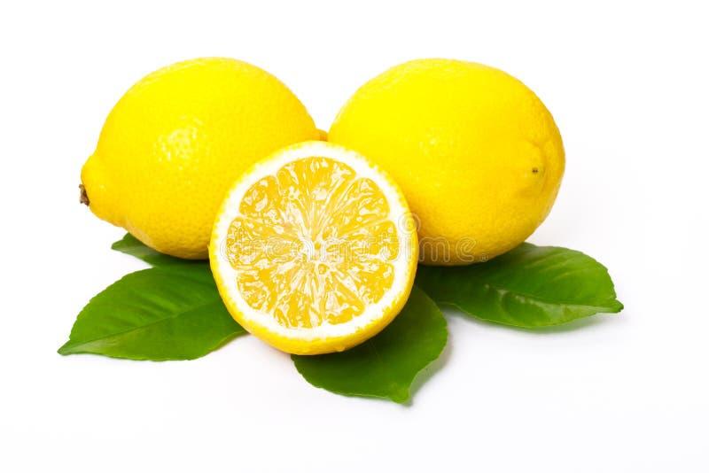 Lemons and lemon leaves royalty free stock photography