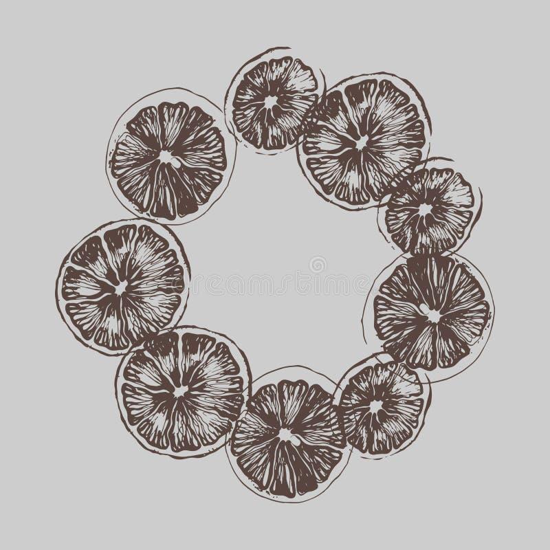 lemons lime royaltyfri illustrationer