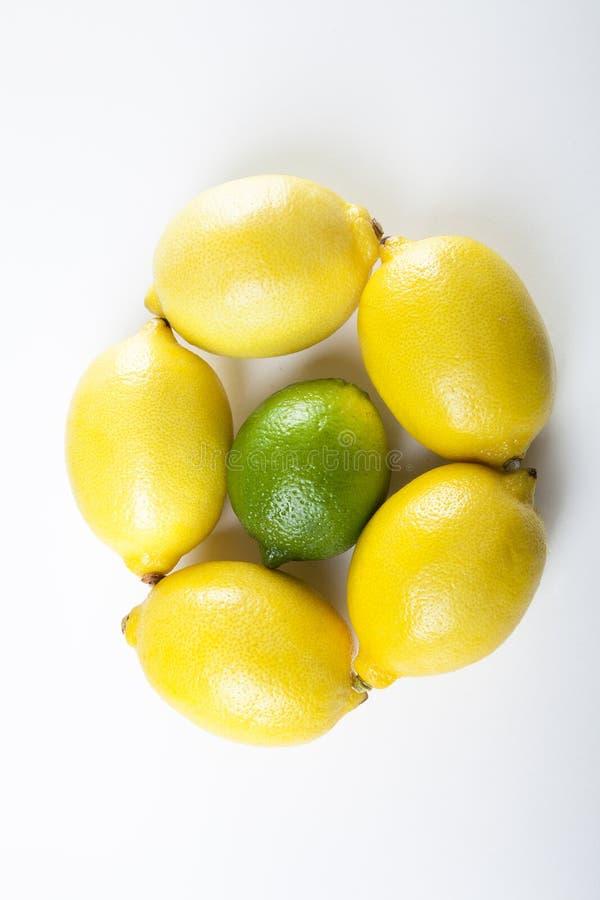 Lemons and lime stock image