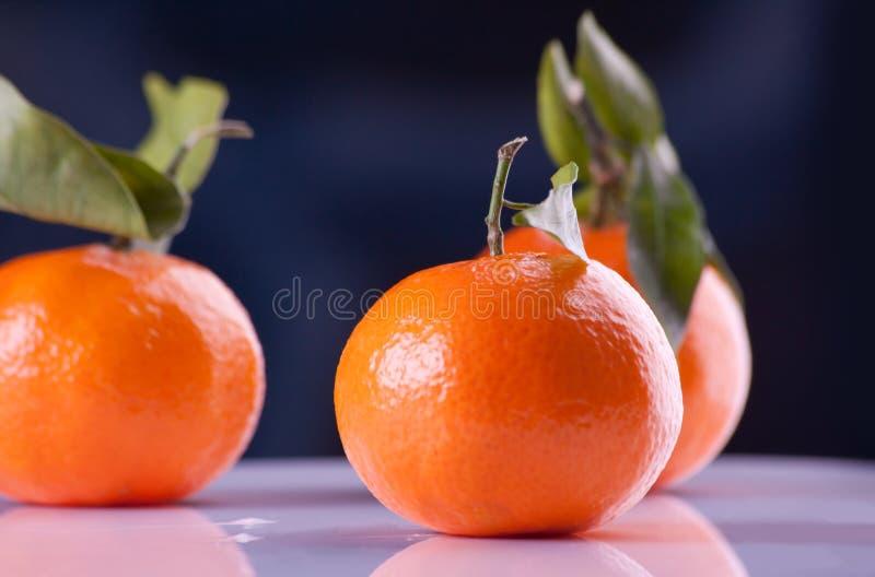 lemons lime royaltyfri fotografi