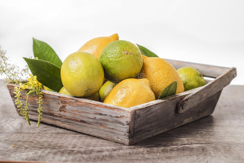 green and yellow lemons in wooden basket stock photos