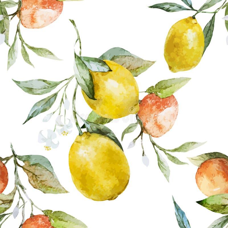 Lemons and oranges vector illustration