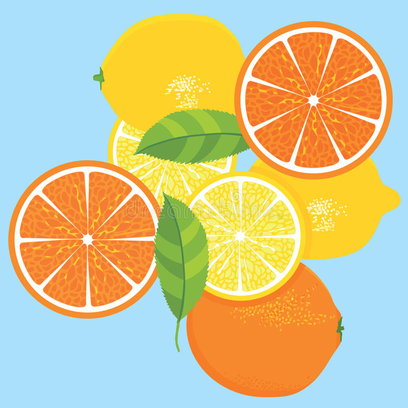 Lemons and Oranges Fruit Design. Oranges and lemons citrus fruit design with green leaves on a blue background vector illustration