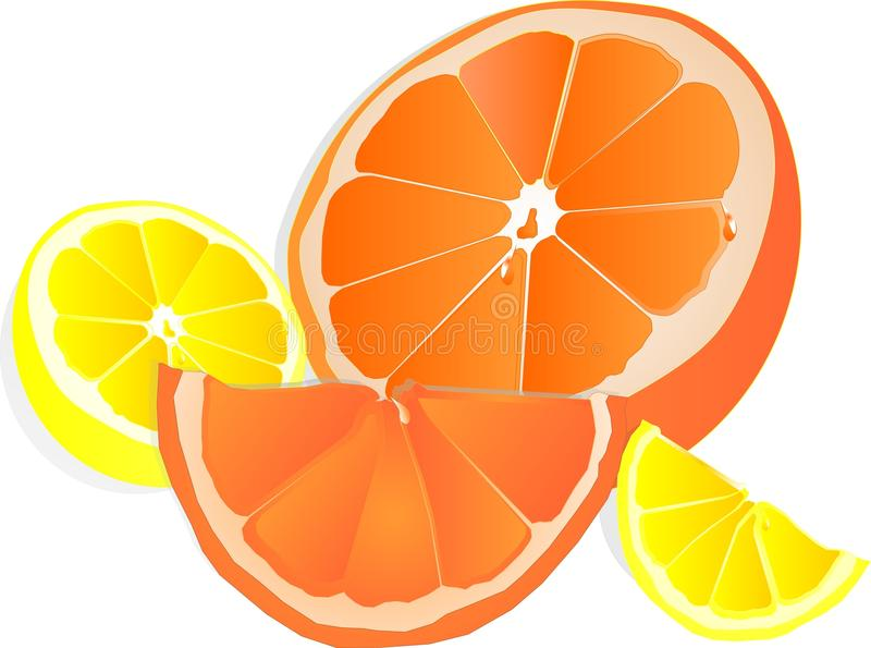 Download Lemons And Oranges Illustration Over White Stock Vector - Image: 12249286