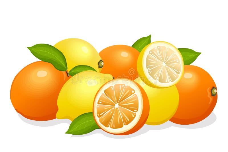 Lemons & oranges mix. Illustration vector illustration