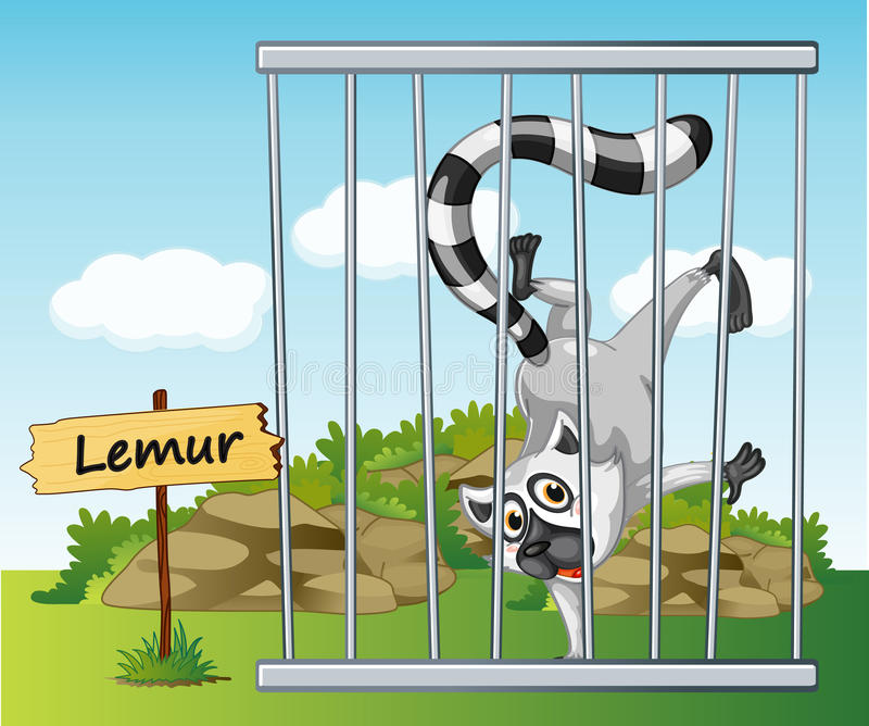Lemur in cage. Illustration of a lemur in cage and wooden board vector illustration