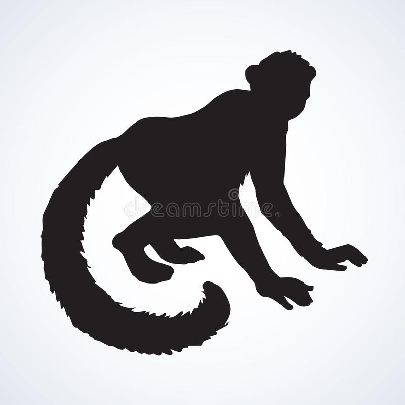 Lemur również zwrócić corel ilustracji wektora ilustracji