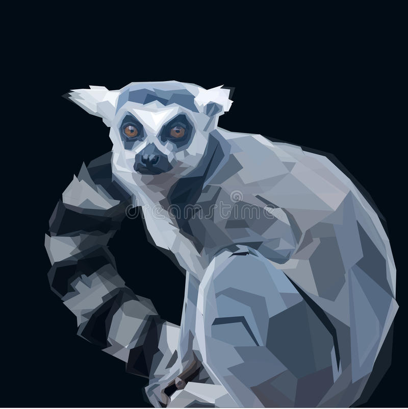 Lemur. Ring tailed grey lemur creeping in shadows on dark background vector illustration