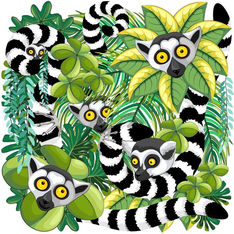 Lemury na Madagascar tropikalnym lesie deszczowym royalty ilustracja