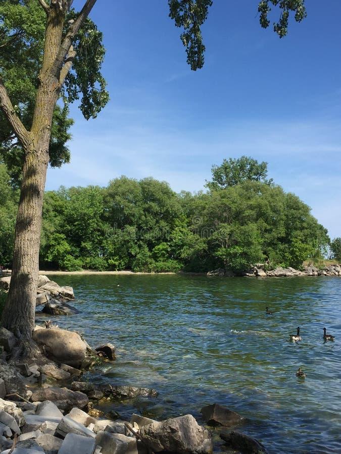 Len Ford Park y el lago Ontario en el día de verano hermoso en Toronto, Ontario, Canadá Summer2018 foto de archivo