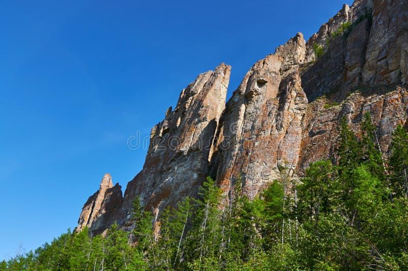 Lena Pillars, bank van de rivier van Lena, Yakutia stock afbeelding