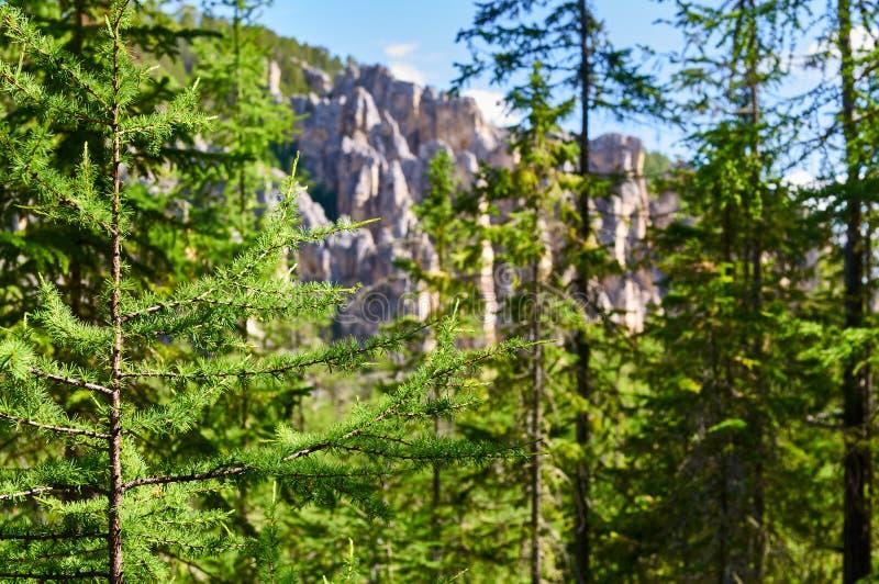 Lena Pillars National Park, Ansicht von der Weise zu übersteigen lizenzfreies stockfoto