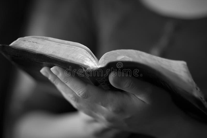 Lendo a Bíblia foto de stock