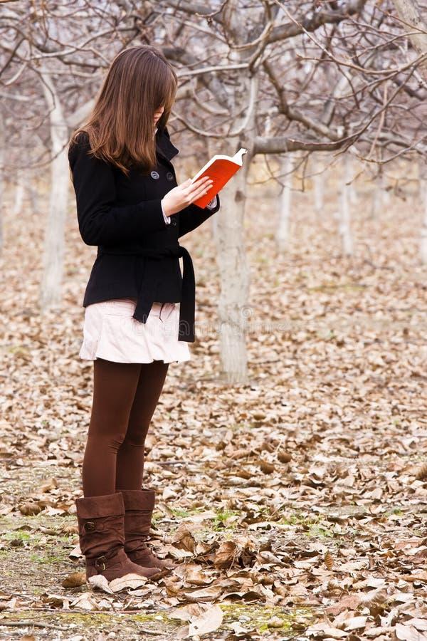 Lendo um livro na floresta imagens de stock