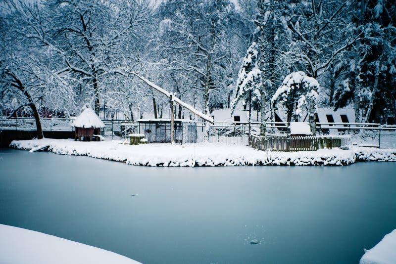 Lendscape de l'hiver photo libre de droits