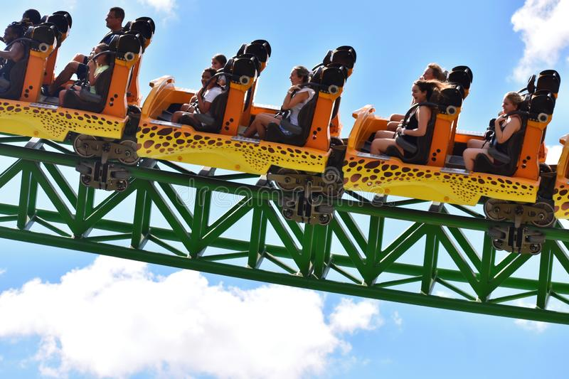 Cheetah Hunt Roller Coaster Ride In Bush Gardens  It Is A Theme Park