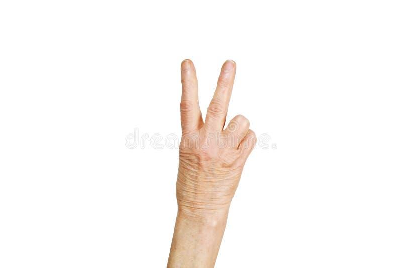 Lengua de gesto femenina mayor, muestras de las manos aisladas en fondo blanco sólido Vieja hembra en sus años 70/años ochenta qu fotos de archivo