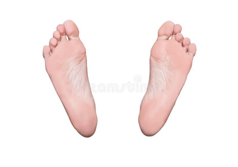 Lenguados izquierdos y derechos del pie, pies femeninos, concepto médico imagenes de archivo