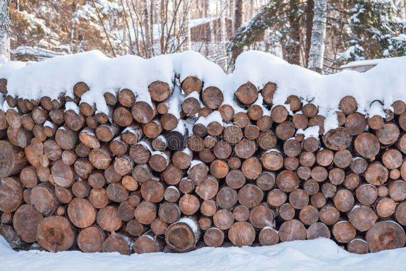 Lenha empilhada nas pilhas, cobertas com a neve troncos cutted em uma cabana alpina na floresta do inverno foto de stock