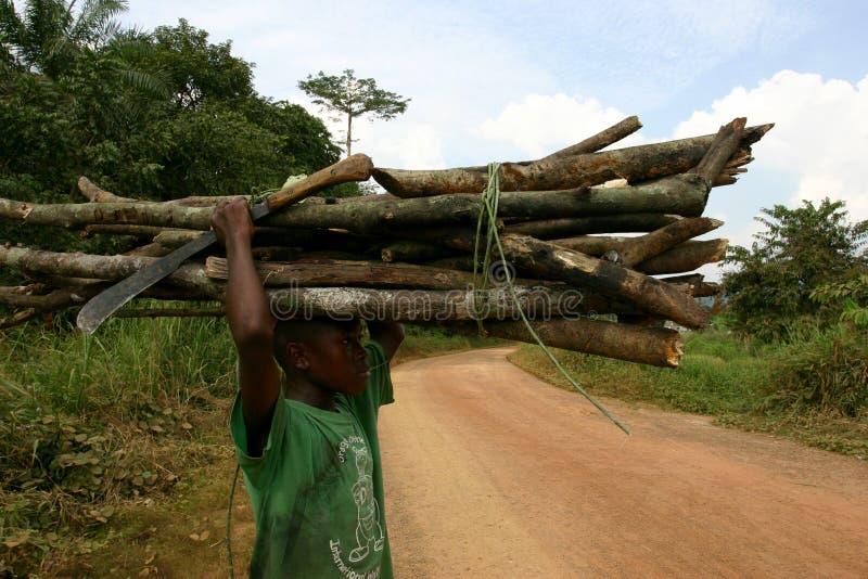 Lenha levando do menino africano e um machete fotografia de stock