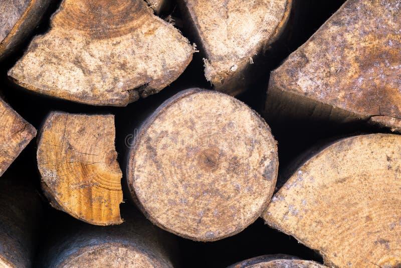 Lenha, log imagem de stock royalty free