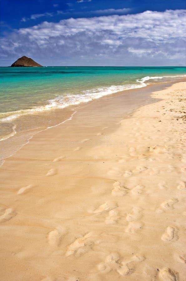 Lenikei Beach - Hawaii stock photography