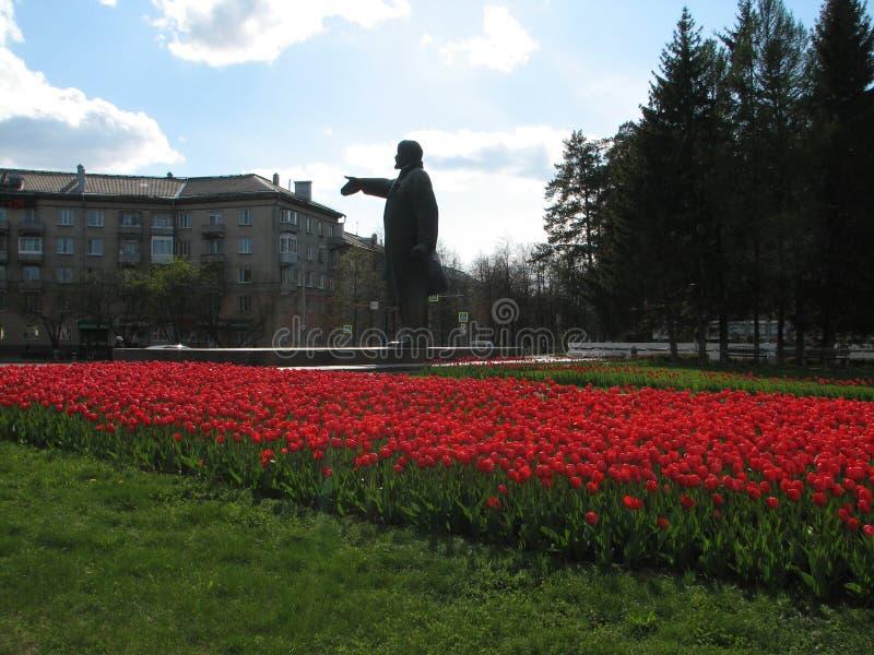 Lenin och tulpan royaltyfri fotografi