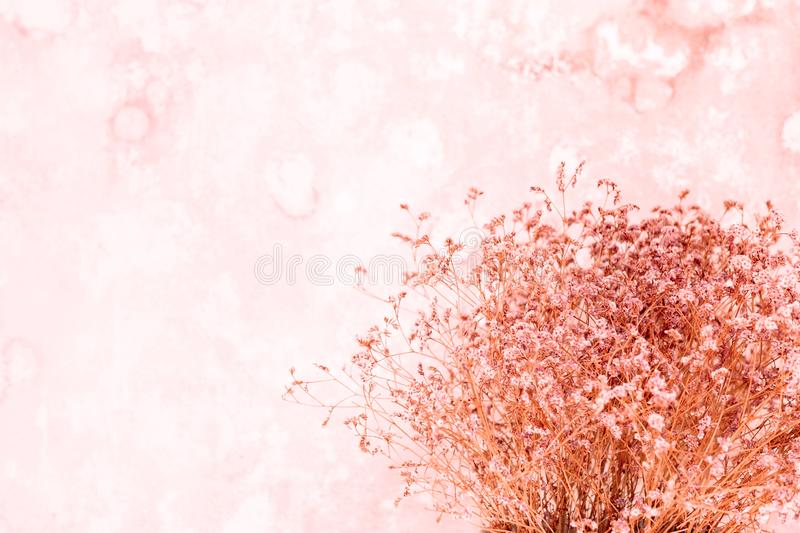 Lens blur Dry small flower bouquet  pastel beige background. Minimal lifestyle concept. Lots of free space on wall background for Design royalty free stock images