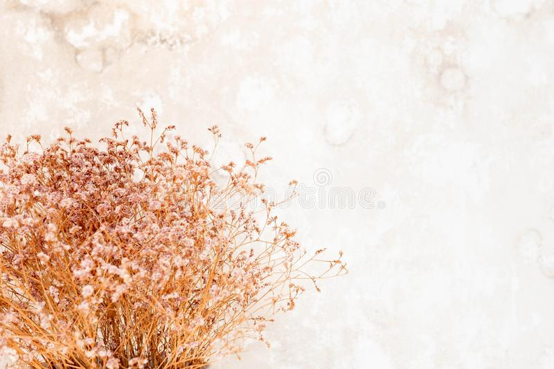 Lens blur Dry small flower bouquet  pastel beige background. Minimal lifestyle concept. Lots of free space on wall background for Design stock image