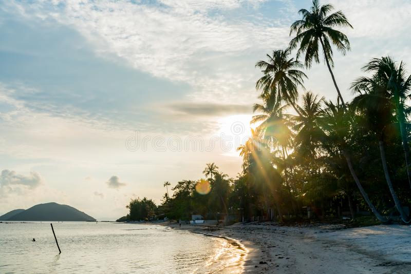Sunrise along Ko Samui beach, Thailand. Lens flare from behind tall,palm trees at sunrise along Ko Samui beach, Thailand royalty free stock photography