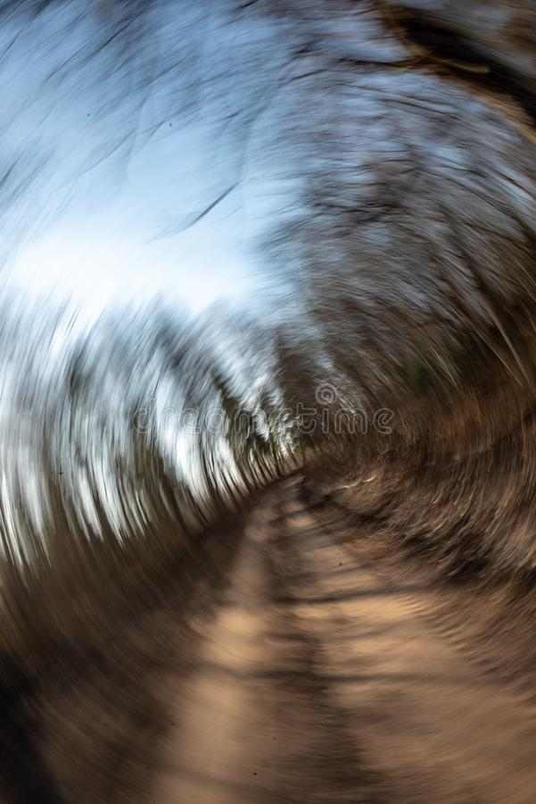 Lens motion blur natural in nature background. Autumn colors abstract stock images