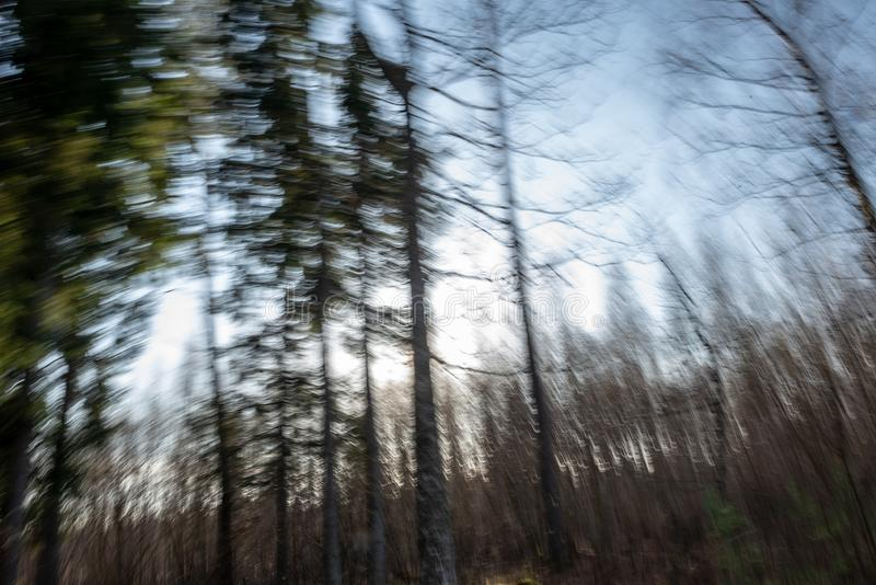 Lens motion blur natural in nature background. Autumn colors abstract royalty free stock photos