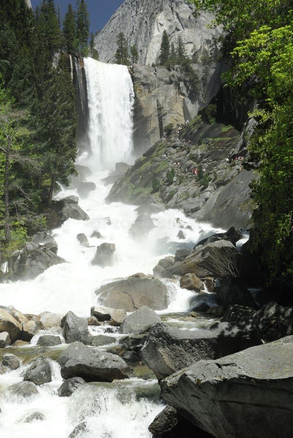 Lente Daling van Nationaal Park Yosemite stock foto
