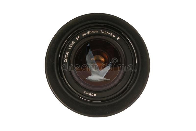 lente de cámara de 28-80m m Dslr foto de archivo libre de regalías