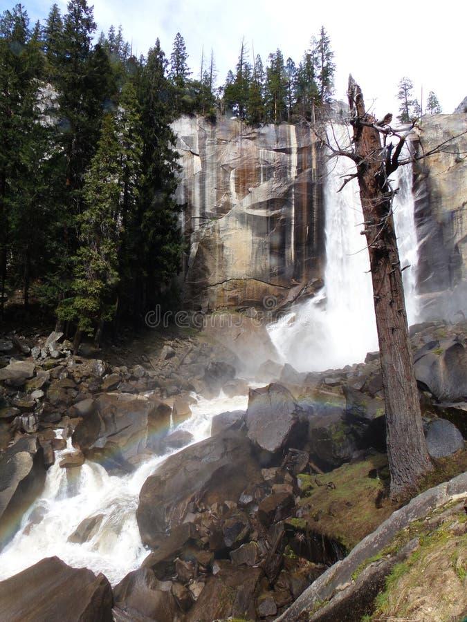 Lentedalingen met regenboog - Waterval in het Nationale Park van Yosemite, Sierra Nevada, Californië stock foto's